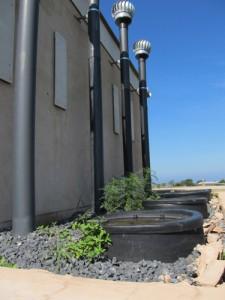 Multiple installation of Ecosan toilets